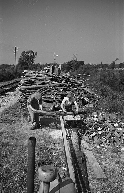 [Sawing wood near Pool Quay Railway Station, on the Oswestry-Welshpool section of the track]