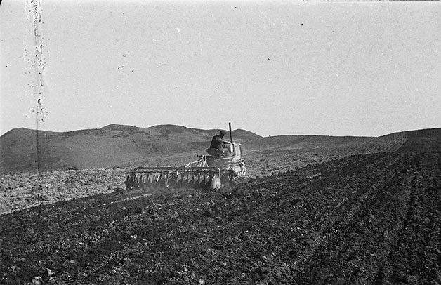 [Potato planting on Dolfor and Montgomeryshire War Agricultural Executive Committee Headquarters]