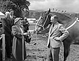 [The Jubilee Royal Welsh Show at Machynlleth]