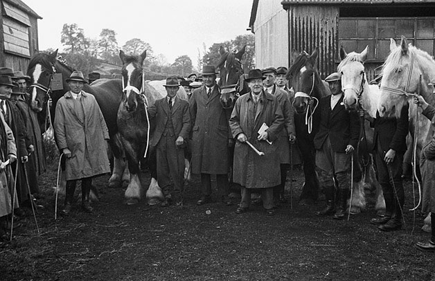 [Newtown horse fair and sale]