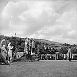[Cyhoeddi Eisteddfod Genedlaethol 1965, Y Drenewydd yn 1964]