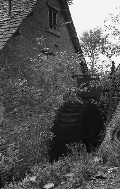 [Derelict watermill in Montgomeryshire]
