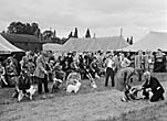 [Minsterley and District Agricultural and Sports Society Annual Show]