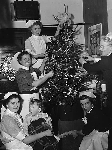 [Christmas Tree at Dolgellau Hospital]