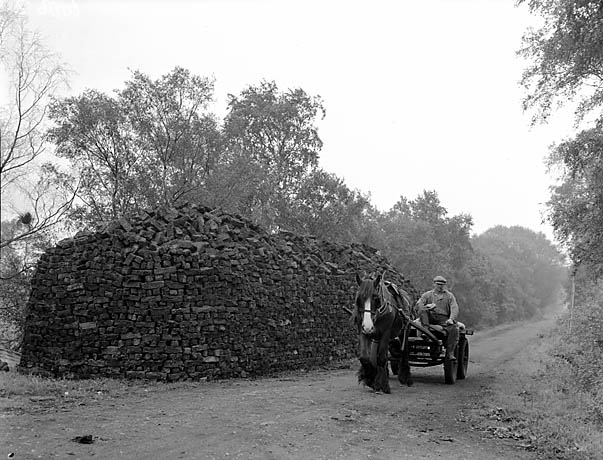 [Peat cutting at Whixall]
