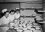[Shrewsbury Royal Infirmary Christmas cakes and decorations]
