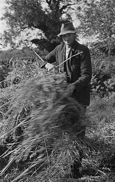 [John Hughes, Dafarn Dywyrch, Llandegla with the tractor which facilitated the harvesting work in 1948]