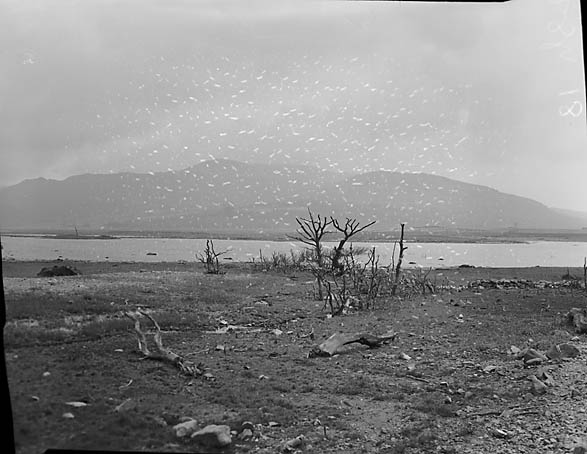 [Trawsfynydd Lake at an ebb while arrangements were made for the new Power Station]