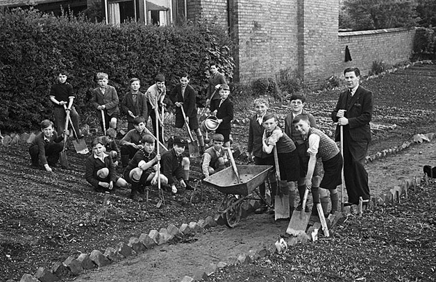 "[Schoolchildren from Montgomeryshire ""dig for victory""]"