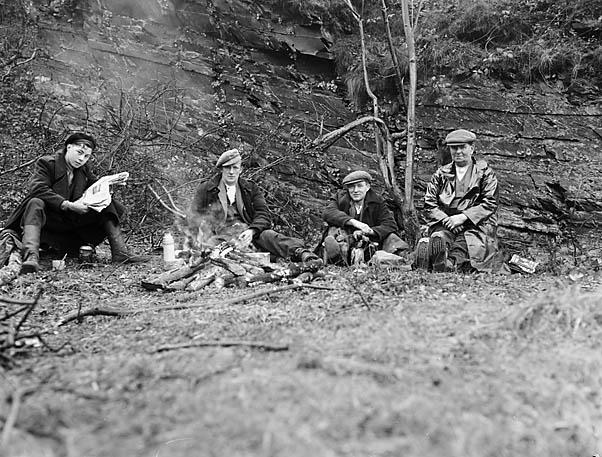 [Plas Berwyn foresters, near Vivod]