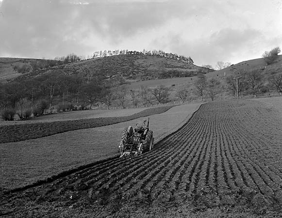 [Ploughing by tractor]