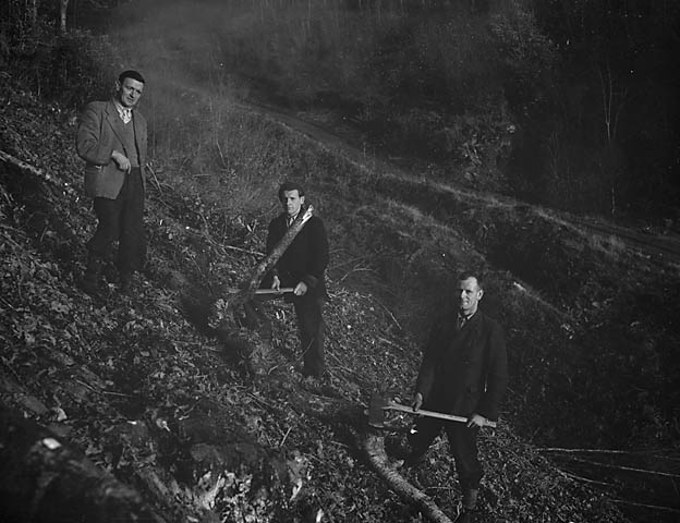 [Foresters and granger at Mawddach]