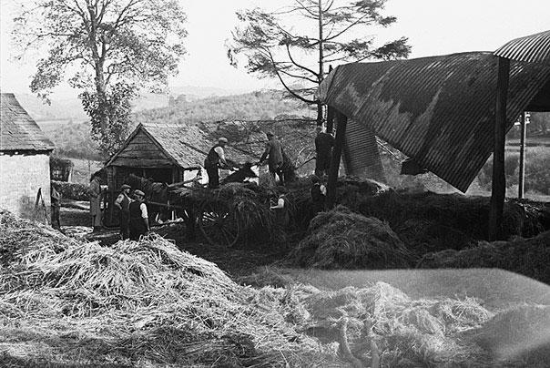 [Fire at Tanllan Farm, Llanfair Caereinion]