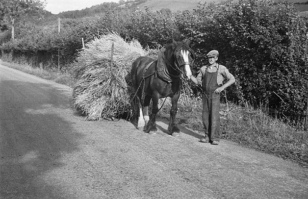['Car llusg' loaded with corn on the road to Llanfyllin]