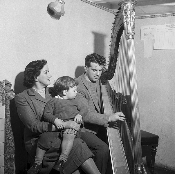 [An old harp in the Marquis Inn, Rhosybol, Anglesey]