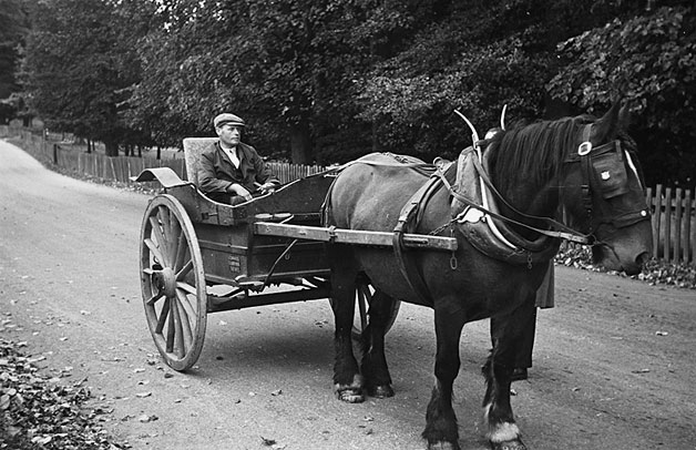 [Horse and cart near Ellesmere]