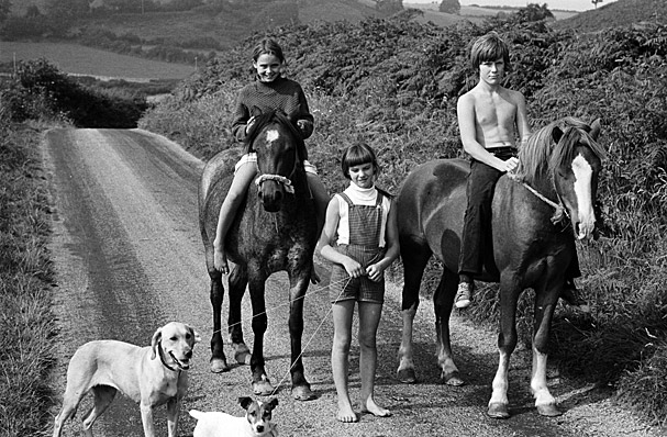 A girl and a boy riding horses alongside a girl walking two dogs