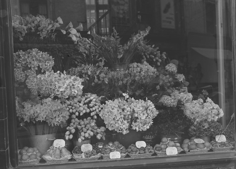 "[""Avondale"" florists shop]"